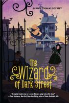 Image for The Wizard of Dark Street