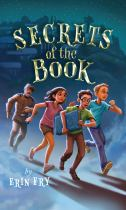 Image for Secrets of the Book