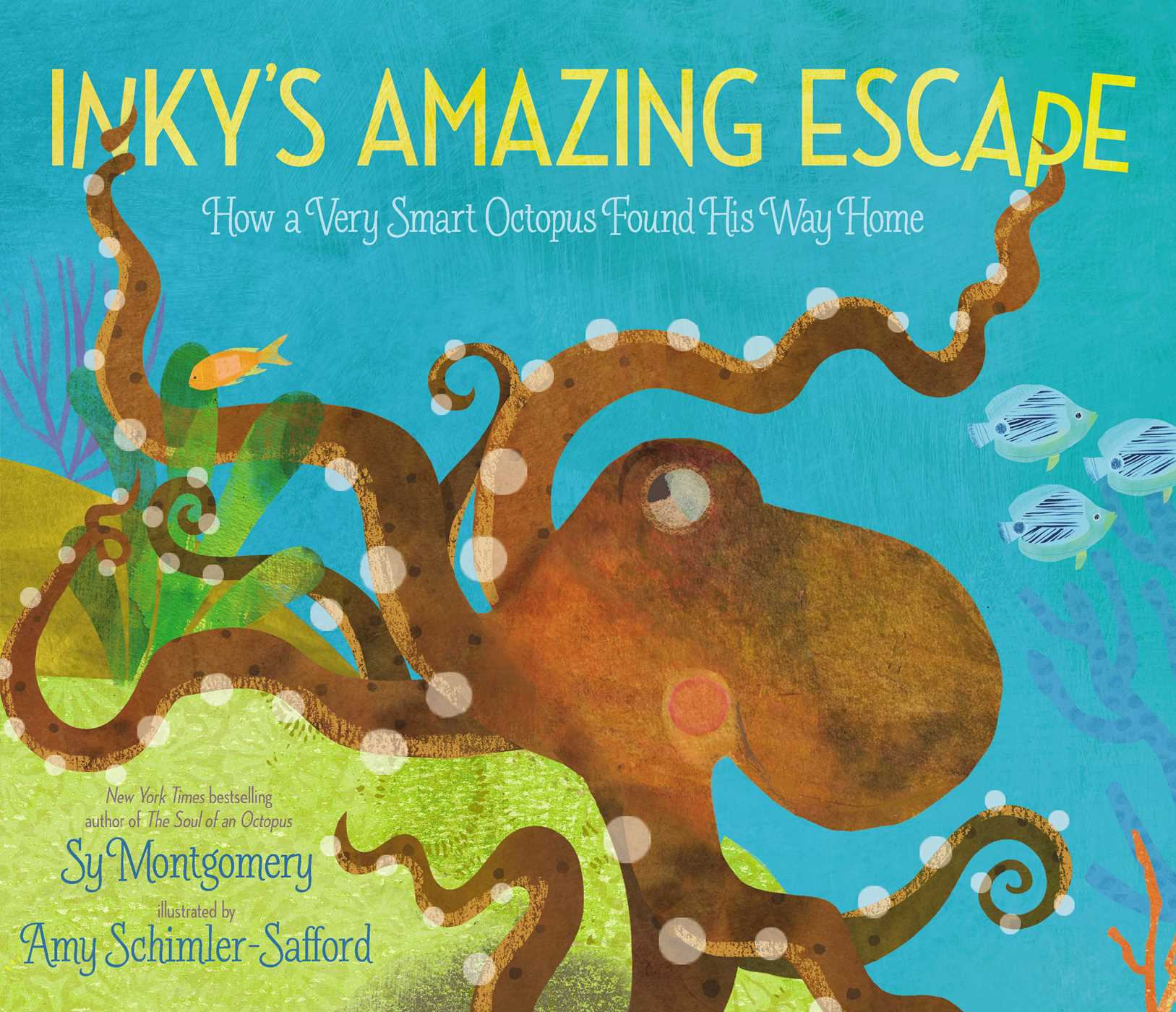 Image for Inky's Amazing Escape : How a Very Smart Octopus Found His Way Home